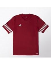 koszulka Adidas entrada