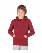 Hooded Sweatshirt BLUZA Champion