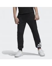 Spodnie Adidas YB MH BOS